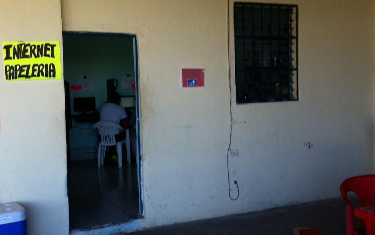 Foto de local en venta en  , maria luisa, mérida, yucatán, 1274237 No. 06