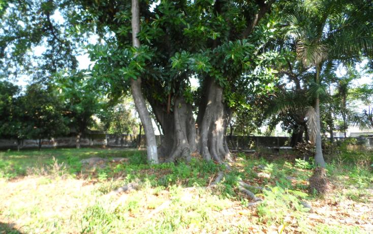 Foto de terreno habitacional en venta en mariano matamoros , tepeyac, cuautla, morelos, 623460 No. 09