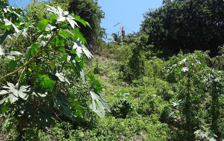Foto de terreno industrial en venta en  , marina brisas, acapulco de juárez, guerrero, 3433919 No. 04