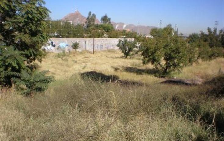 Foto de terreno comercial en venta en  , mármol viejo, chihuahua, chihuahua, 1307479 No. 01