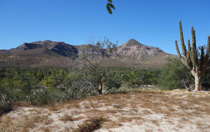 Foto de terreno habitacional en venta en  , marquez de leon, la paz, baja california sur, 1061429 No. 04