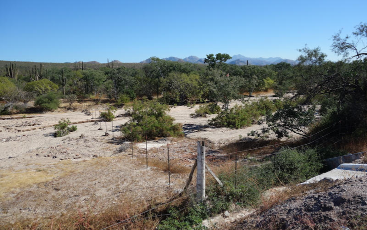 Foto de terreno habitacional en venta en  , marquez de leon, la paz, baja california sur, 1061429 No. 05