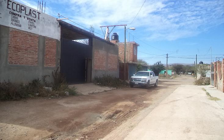 Foto de local en renta en  , mart?nez dom?nguez, guadalupe, zacatecas, 1039537 No. 04