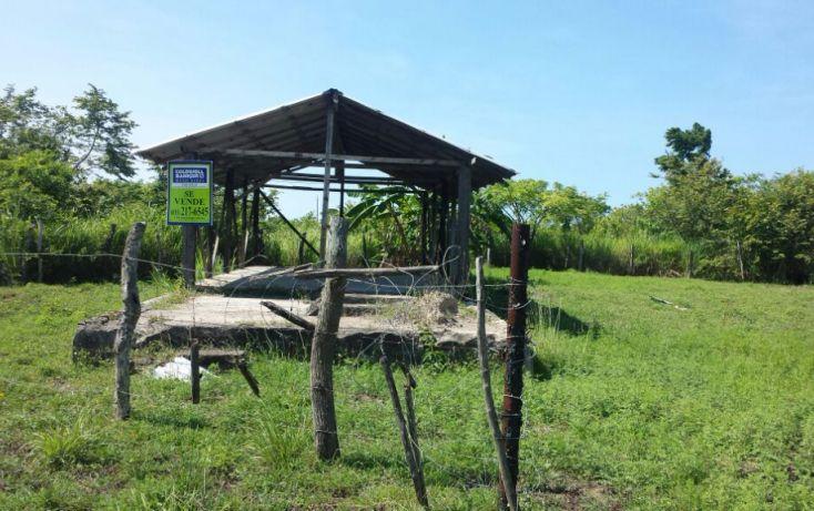 Foto de terreno habitacional en venta en, mata redonda, pueblo viejo, veracruz, 1042557 no 03