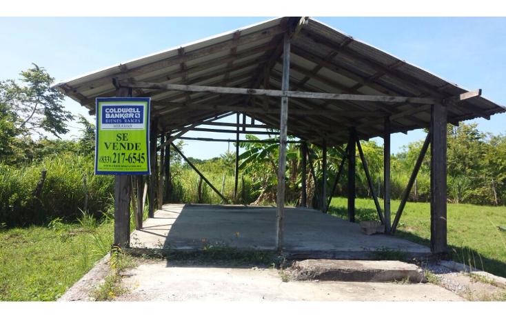 Foto de terreno habitacional en venta en  , mata redonda, pueblo viejo, veracruz de ignacio de la llave, 1042557 No. 02