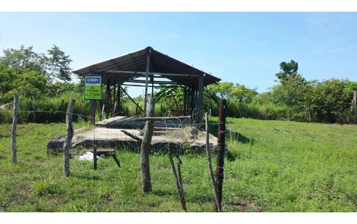 Foto de terreno habitacional en venta en  , mata redonda, pueblo viejo, veracruz de ignacio de la llave, 1042557 No. 03