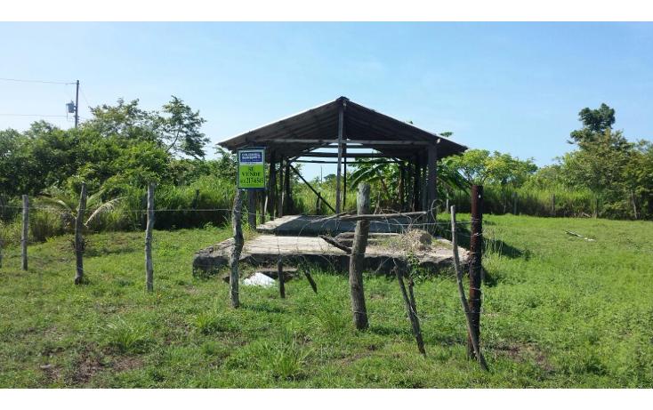 Foto de terreno habitacional en venta en  , mata redonda, pueblo viejo, veracruz de ignacio de la llave, 1042557 No. 04