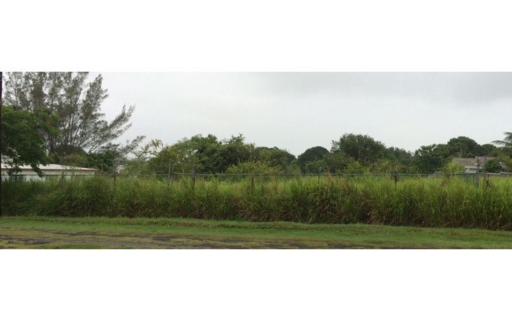 Foto de terreno habitacional en venta en  , mata redonda, pueblo viejo, veracruz de ignacio de la llave, 1277993 No. 01