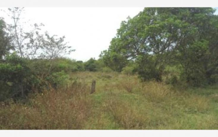 Foto de terreno comercial en venta en matacocuite, mata cocuite, tlalixcoyan, veracruz, 1906368 no 07
