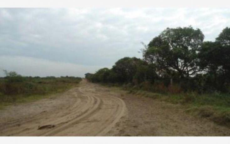 Foto de terreno comercial en venta en matacocuite, mata cocuite, tlalixcoyan, veracruz, 1906368 no 10