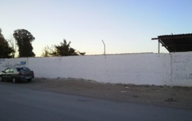 Foto de terreno habitacional en venta en  , matamoros de la laguna centro, matamoros, coahuila de zaragoza, 982277 No. 01