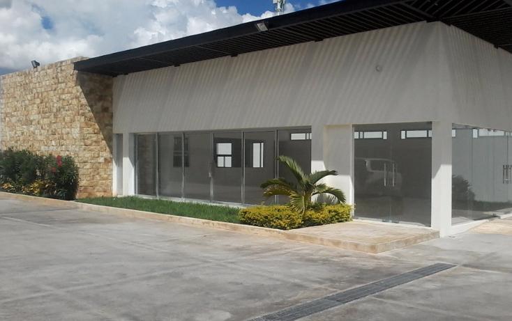 Foto de local en renta en  , maya, m?rida, yucat?n, 1468221 No. 01