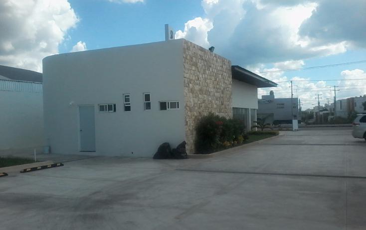 Foto de local en renta en  , maya, m?rida, yucat?n, 1468221 No. 07