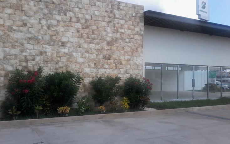 Foto de local en renta en  , maya, m?rida, yucat?n, 1468221 No. 08