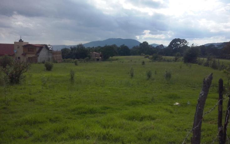 Foto de terreno habitacional en venta en  , mazamitla, mazamitla, jalisco, 1507257 No. 02