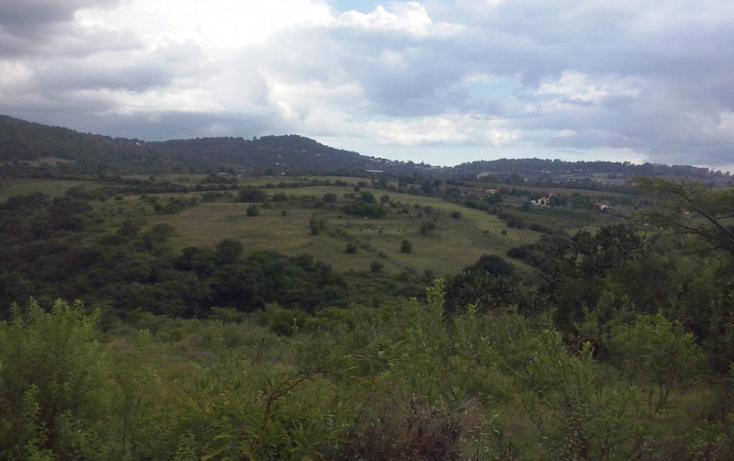 Foto de terreno comercial en venta en  , mazamitla, mazamitla, jalisco, 1507287 No. 02
