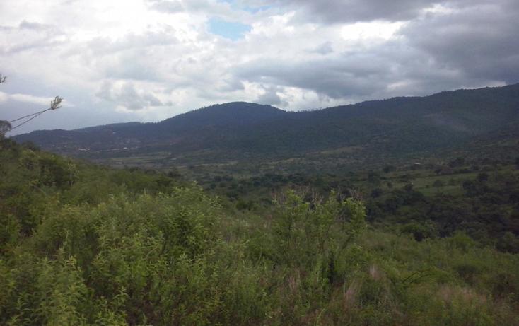 Foto de terreno comercial en venta en  , mazamitla, mazamitla, jalisco, 1507287 No. 04