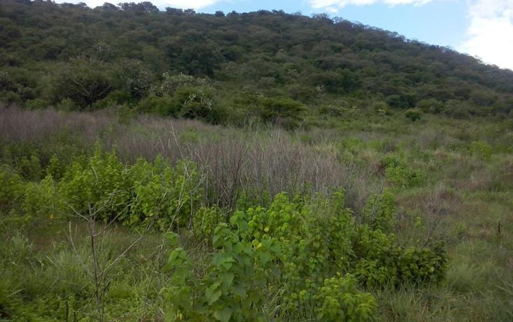 Foto de terreno comercial en venta en  , mazamitla, mazamitla, jalisco, 1507287 No. 05