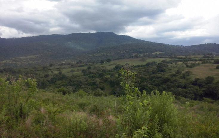 Foto de terreno comercial en venta en  , mazamitla, mazamitla, jalisco, 1507287 No. 06