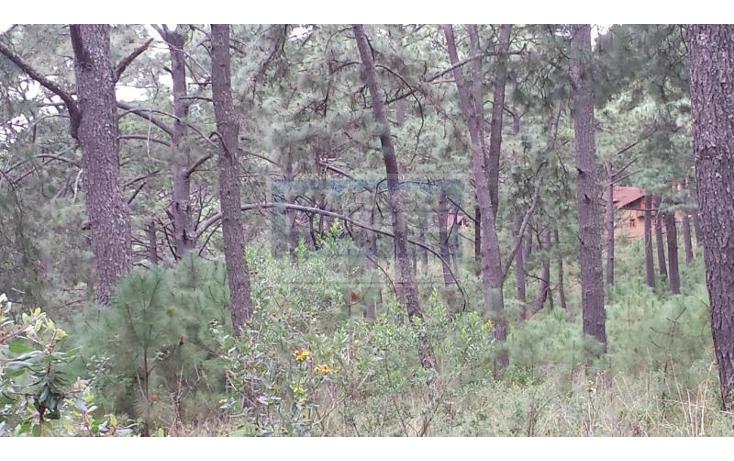 Foto de terreno comercial en venta en  , mazamitla, mazamitla, jalisco, 1839844 No. 03