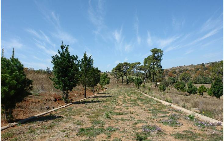 Foto de terreno habitacional en venta en  , mazamitla, mazamitla, jalisco, 2034108 No. 01