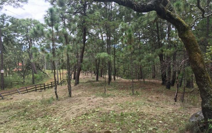 Foto de terreno habitacional en venta en  , mazamitla, mazamitla, jalisco, 2045657 No. 02