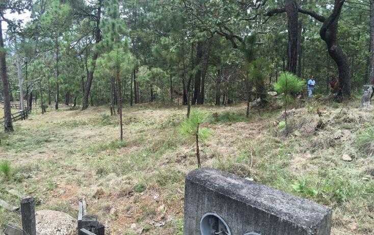 Foto de terreno habitacional en venta en  , mazamitla, mazamitla, jalisco, 2045657 No. 09