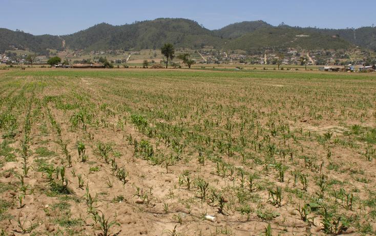 Foto de terreno comercial en venta en  , mazapa, zacapoaxtla, puebla, 1134349 No. 06