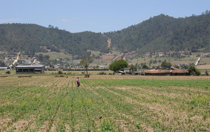 Foto de terreno comercial en venta en  , mazapa, zacapoaxtla, puebla, 1134349 No. 07