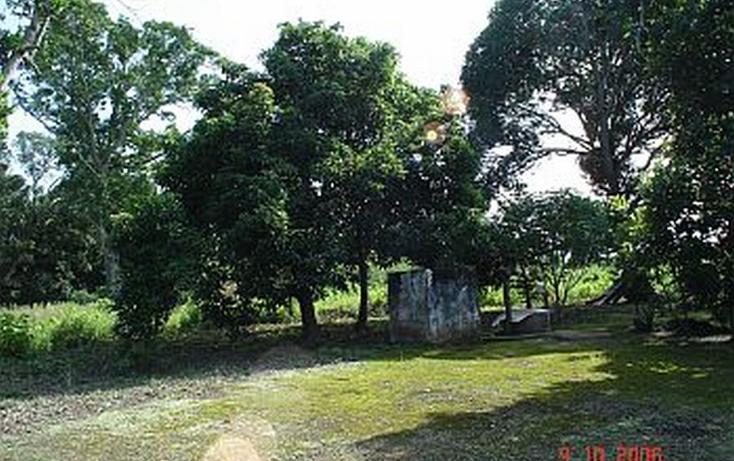 Foto de terreno comercial en venta en  , medellin de bravo, medellín, veracruz de ignacio de la llave, 1280239 No. 04
