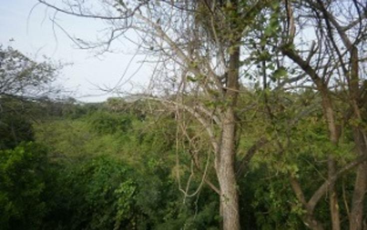 Foto de terreno comercial en venta en  , medellin de bravo, medellín, veracruz de ignacio de la llave, 1416947 No. 03
