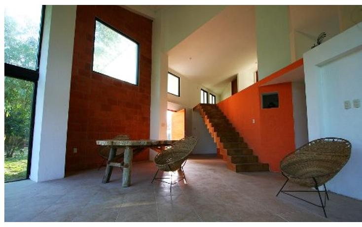 Foto de terreno habitacional en venta en  , medellin de bravo, medellín, veracruz de ignacio de la llave, 1416999 No. 06