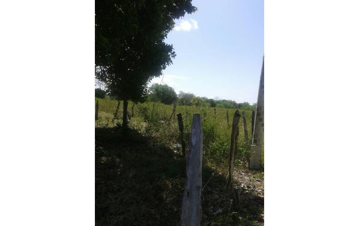 Foto de terreno habitacional en venta en  , medellin y pigua 1a secc, centro, tabasco, 2012187 No. 03
