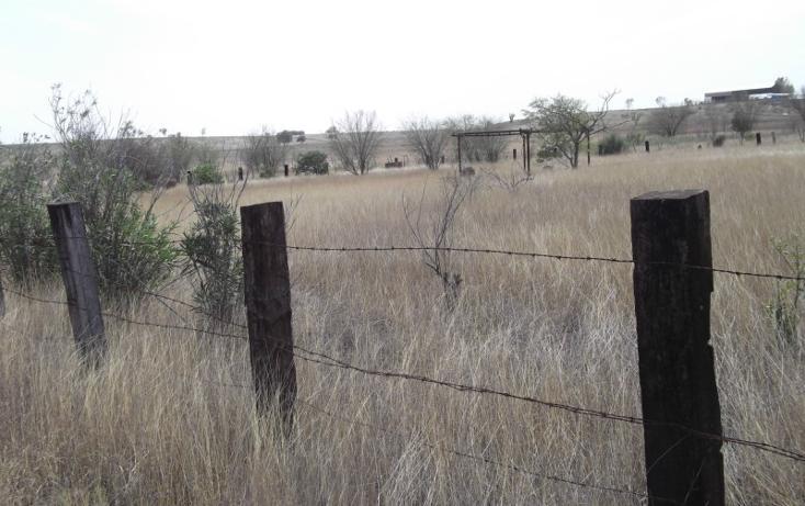 Foto de terreno habitacional en venta en melchor ocampo , cadereyta jimenez centro, cadereyta jiménez, nuevo león, 448593 No. 03