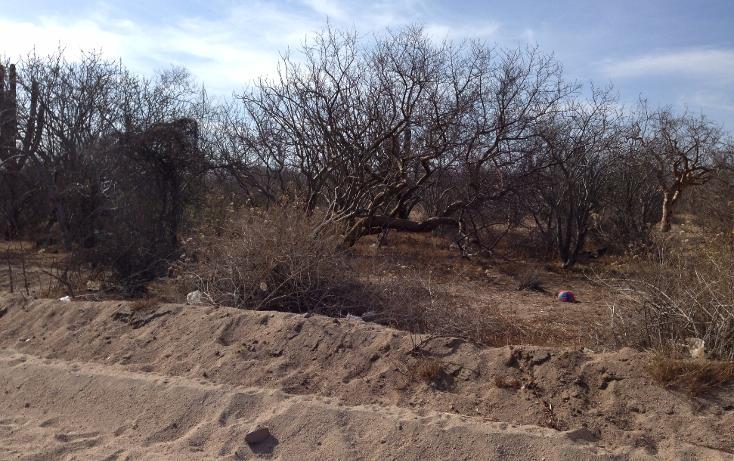 Foto de terreno habitacional en venta en  , melitón albañez, la paz, baja california sur, 1117471 No. 01