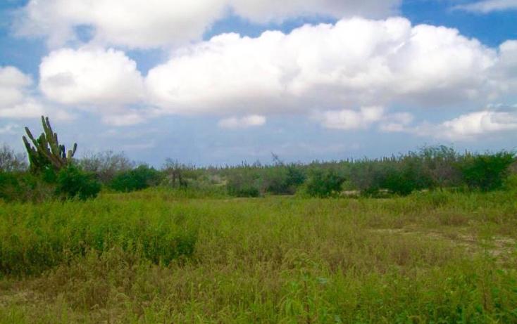 Foto de terreno habitacional en venta en sn , melitón albañez, la paz, baja california sur, 1433701 No. 01