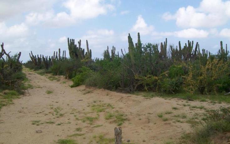 Foto de terreno habitacional en venta en sn , melitón albañez, la paz, baja california sur, 1433701 No. 04