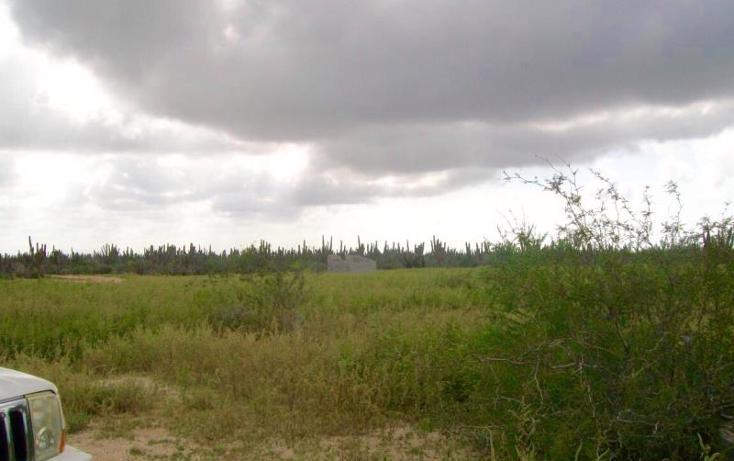 Foto de terreno habitacional en venta en sn , melitón albañez, la paz, baja california sur, 1433701 No. 05