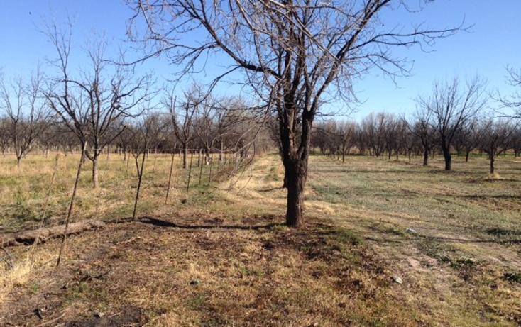 Foto de rancho en venta en  , meoqui, meoqui, chihuahua, 1598680 No. 02