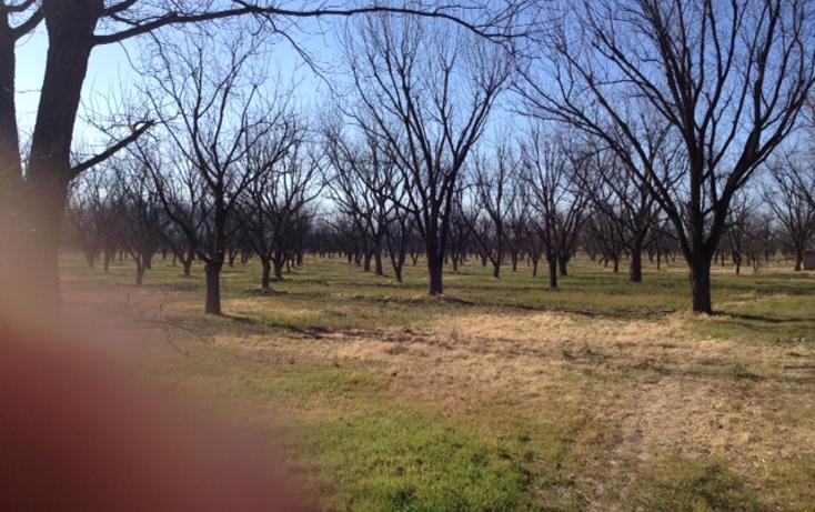 Foto de rancho en venta en  , meoqui, meoqui, chihuahua, 1598680 No. 05