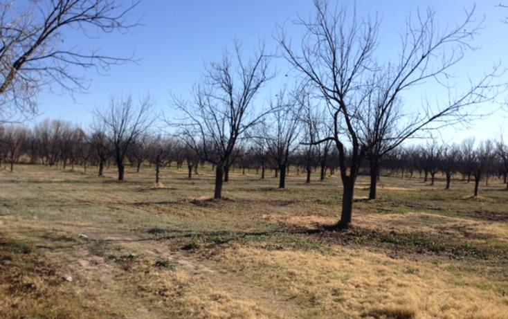 Foto de rancho en venta en  , meoqui, meoqui, chihuahua, 1598680 No. 08