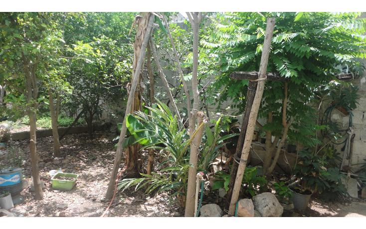 Foto de casa en venta en  , mercedes barrera, mérida, yucatán, 1759302 No. 09