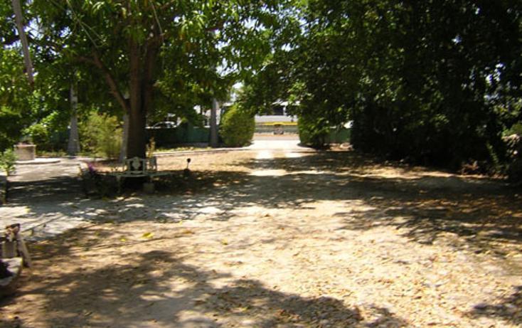 Foto de local en renta en, merida centro, mérida, yucatán, 1066783 no 08