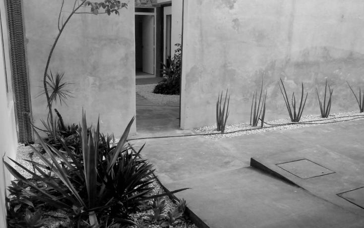 Foto de local en renta en  , merida centro, mérida, yucatán, 1091835 No. 12