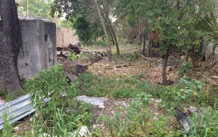 Foto de casa en venta en  , merida centro, mérida, yucatán, 1102063 No. 12
