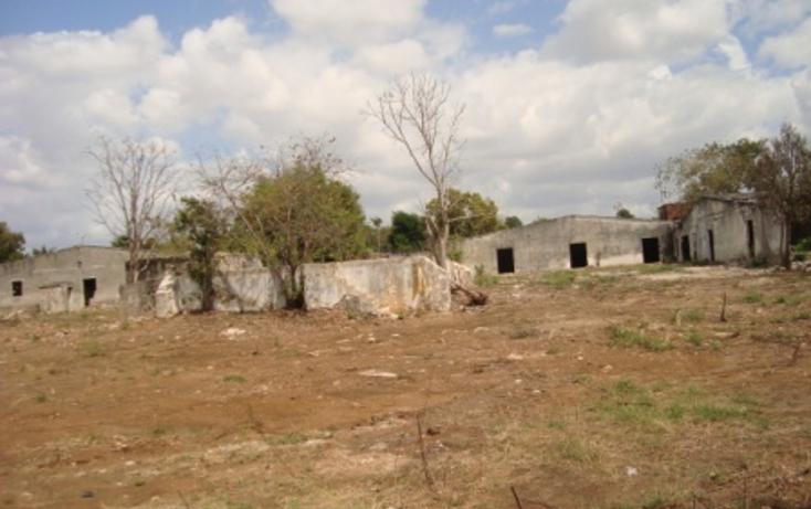 Foto de terreno comercial en venta en  , merida centro, mérida, yucatán, 1115669 No. 02
