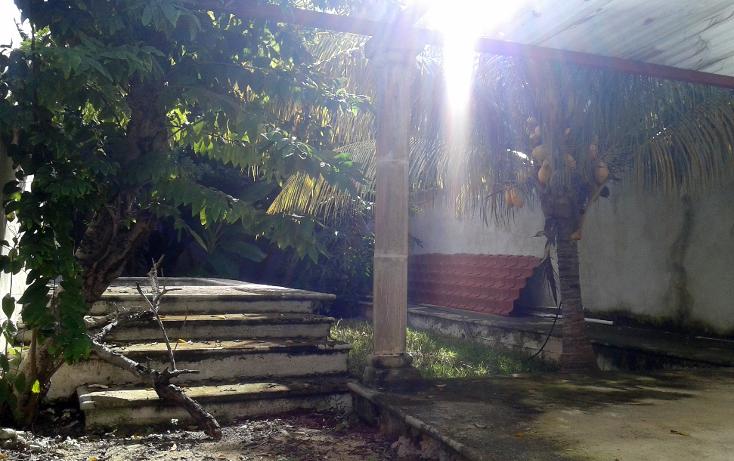 Foto de casa en venta en  , merida centro, mérida, yucatán, 1166509 No. 11