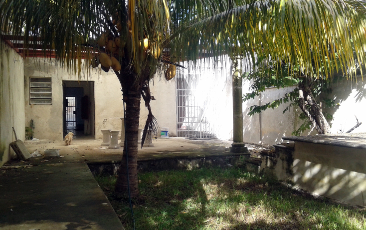 Foto de casa en venta en  , merida centro, mérida, yucatán, 1166509 No. 14