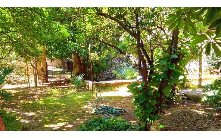 Foto de casa en venta en  , merida centro, m?rida, yucat?n, 1256851 No. 09