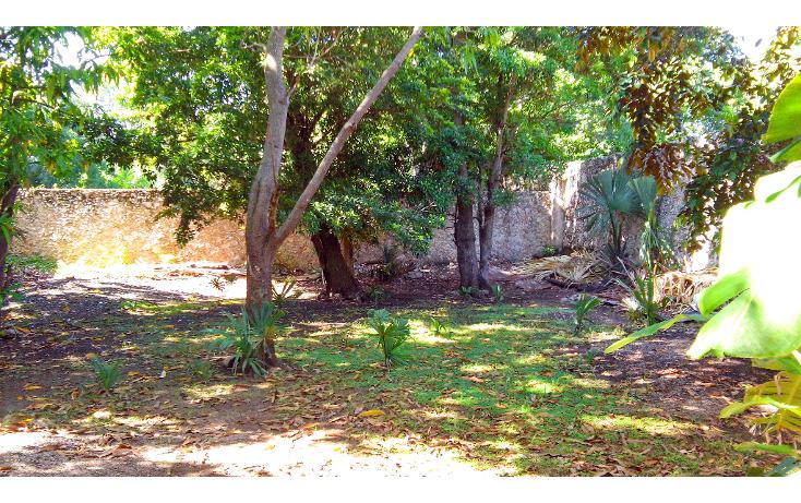 Foto de casa en venta en  , merida centro, m?rida, yucat?n, 1256851 No. 11